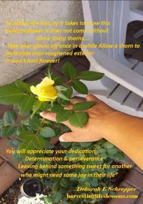 pain and joy yellow rose.pdf