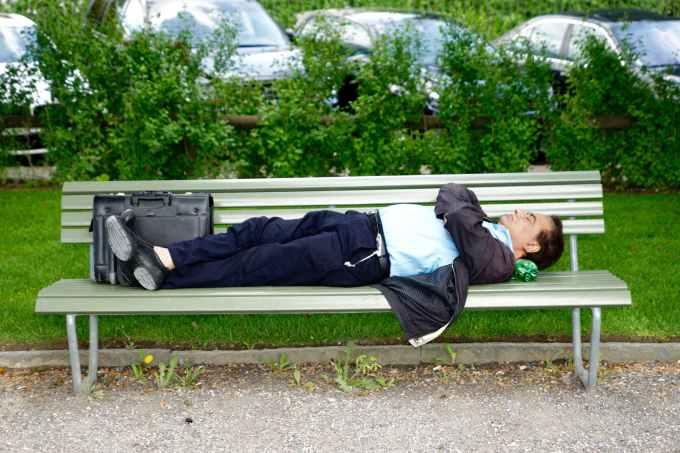 adult bench business man garden